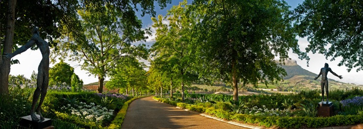 Delaire Graff Estate, a flawless diamond in the South African Vineyards