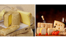 Frenchies say cheese: matching food and wine by a pro!