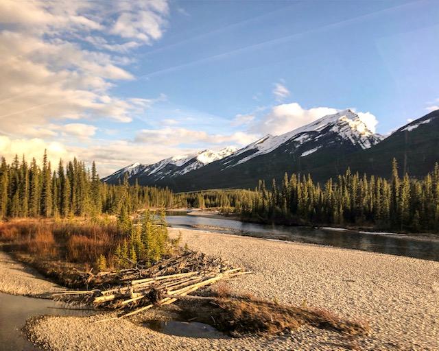 Wild Wild West : une plongée dans l'immensité des plaines sauvages du Canada