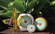 News partenaire : terre d'Oc - Du bio pour votre peau et votre maison